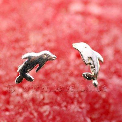 Oorringetjes voor kinderen in massief zilver - 'DolFijn'