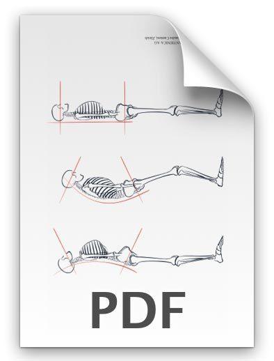 PDF: Aufrichtung