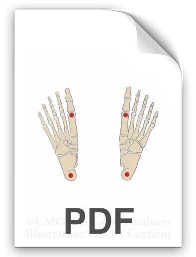 PDF: Fuss-Schwebepunkte