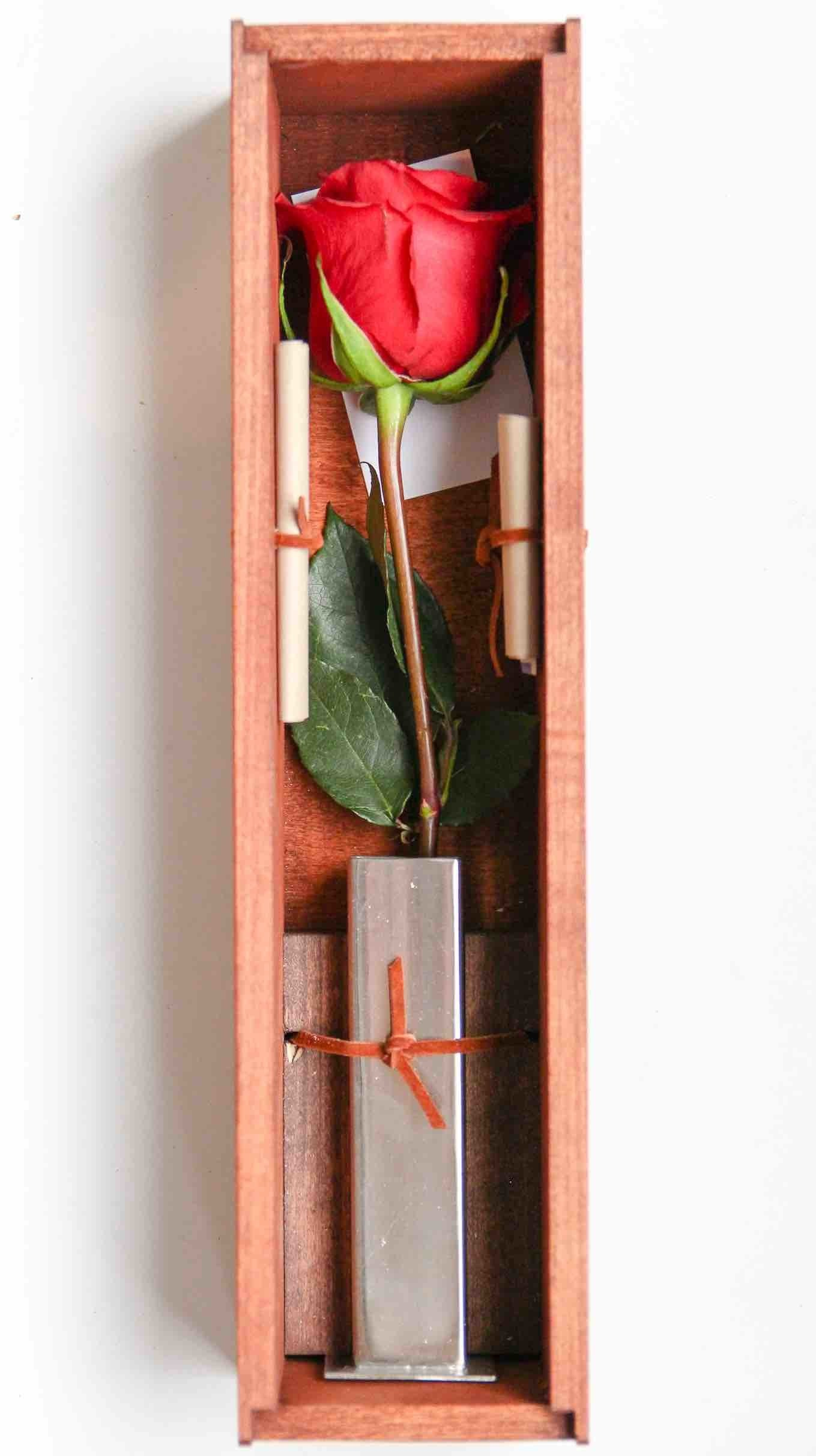 Buy or Send a Single Rose for Valentineu0027s Day One Red Rose Online | Single Rose Delivery | US | Ship One Rose  sc 1 st  Ship One Rose & Buy or Send a Single Rose for Valentineu0027s Day One Red Rose Online ... Aboutintivar.Com