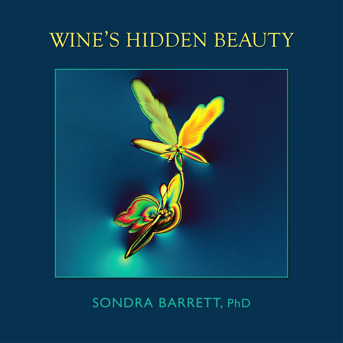 Wine's Hidden Beauty Book 00000