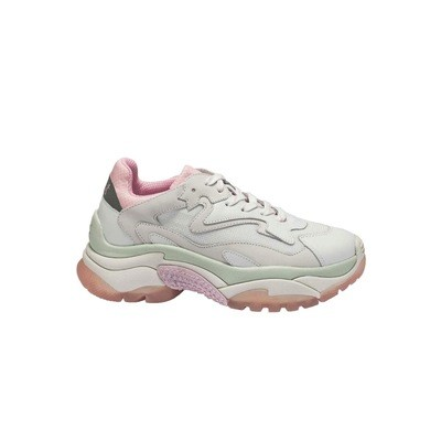 ASH - Sneakers Addict - White/Pink