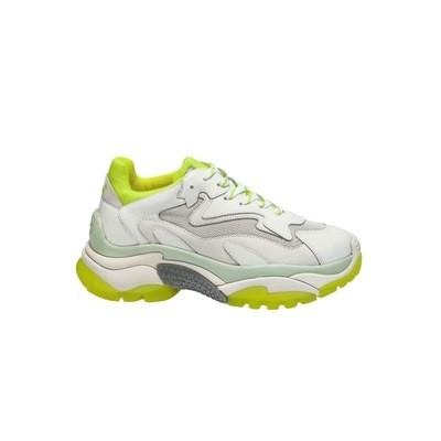 ASH - Sneakers Addict - White/Yellow