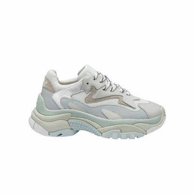 ASH - Sneakers Addict - White