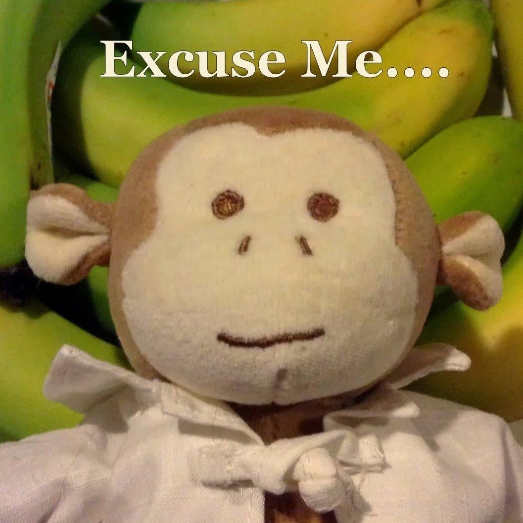 Excuse Me (Monkey Farts)
