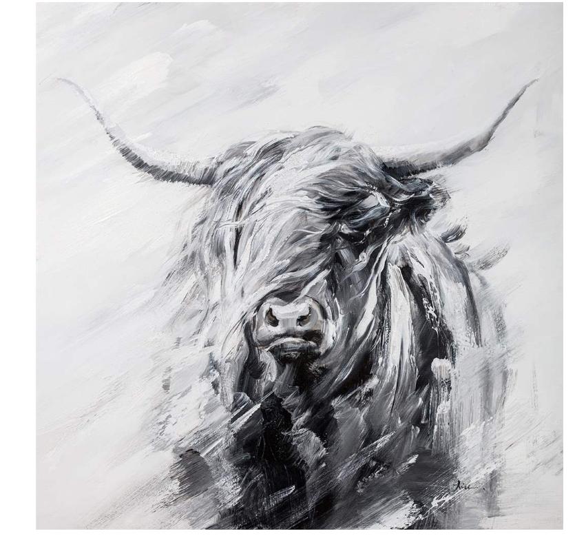 Toile décorative canvas -Vache Highland