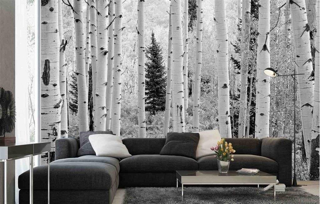 Murale Forêt de Trembles, Montagnes Elk, Colorado (Noir et Blanc) 13.5' x 9'