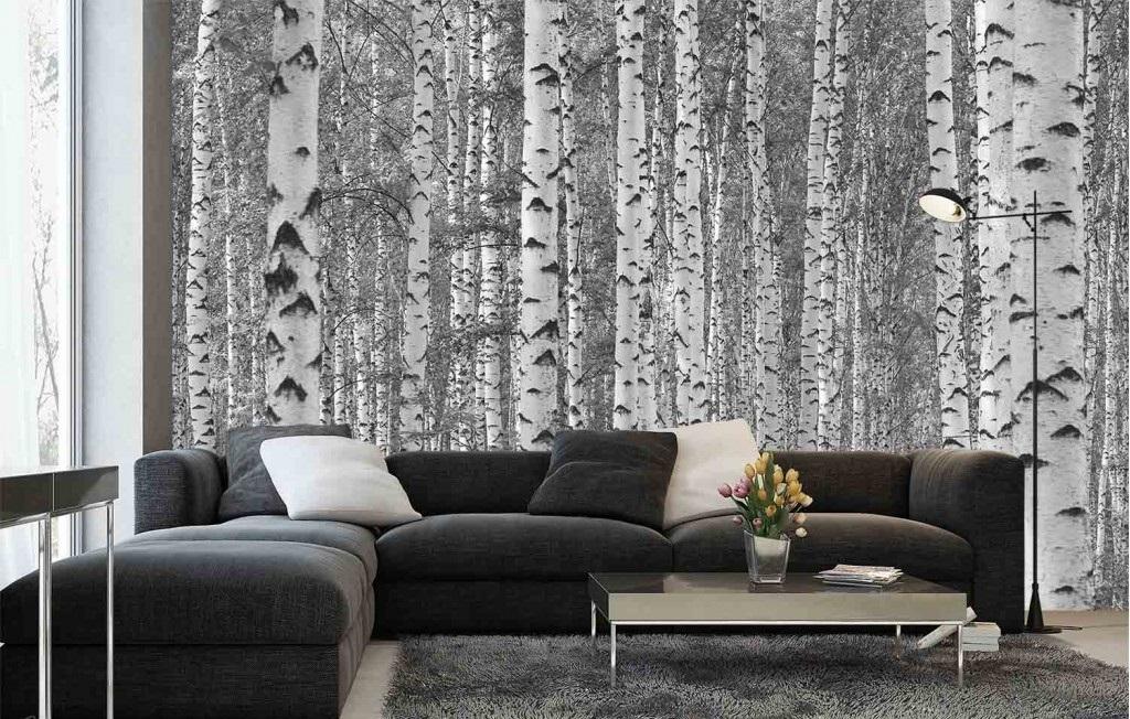 Murale Forêt de bouleaux 15' x 8'