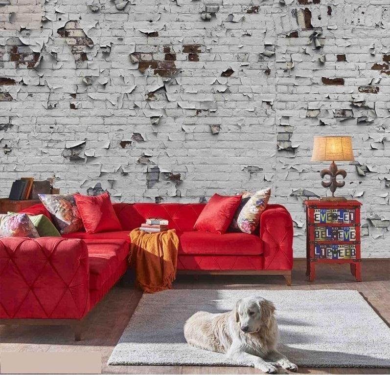 Murale Mur de Briques avec Peinture Écaillée  13.5' x 9'