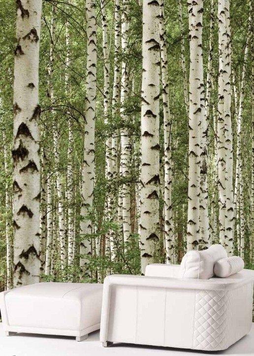 Murale Forêt de bouleaux en couleurs 6' x 8'
