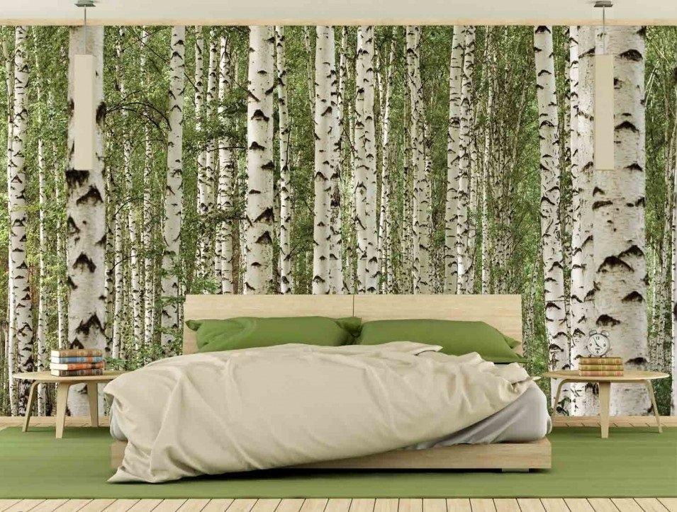 Murale Forêt de bouleaux en couleurs 13.5' x 9'