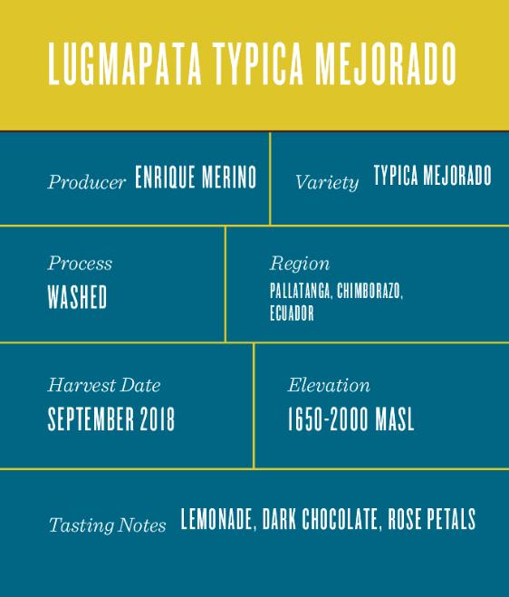 Ecuador Lugmapata Typica Mejorado