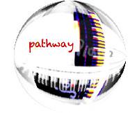 Pathway Programme