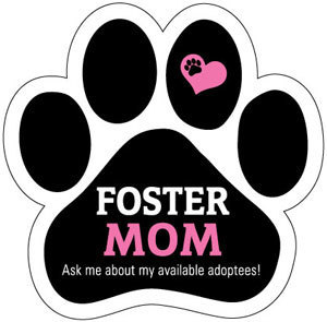 Foster Mom Magnet