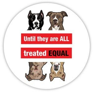 Pit Bull Equality Magnet