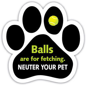 Balls are for Fetching Magnet