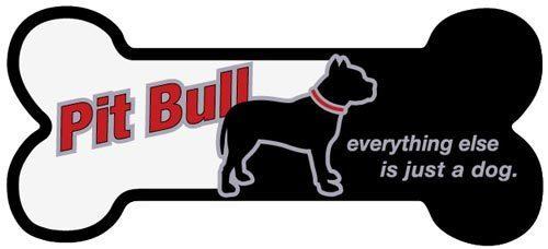 Everything Else Is Just a Dog (Bone) Magnet