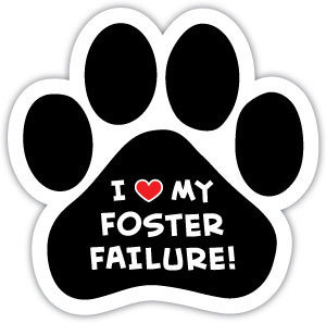 I love my foster failure