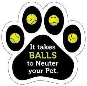 It Takes Balls to Neuter Your Pet