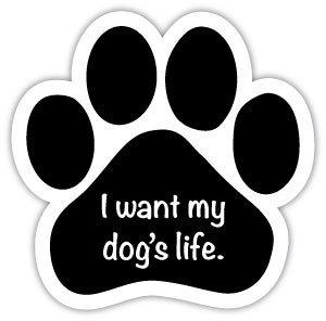 I want my dog's life