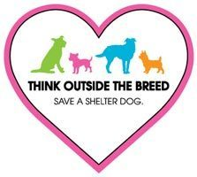 Think Outside the Breed Magnet