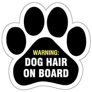 Dog Hair on Board