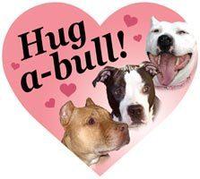 Hug A Bull Heart