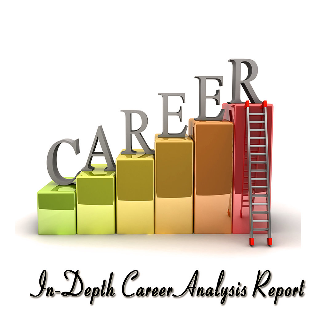 Option O : Advance Career, Education, Financial, Business and Life Analysis Report (Multiple Queries | Voice Mode)