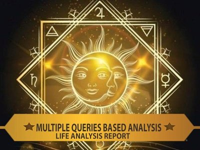 Option Q : Brief  Life Analysis  Report ( Life Analysis Report | Voice Mode | Multiple Queries )​ ​