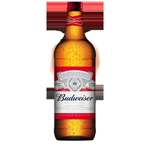 Bière 1.18L 5,99$