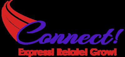 Connect!  Executive Leadership Academy - DISC