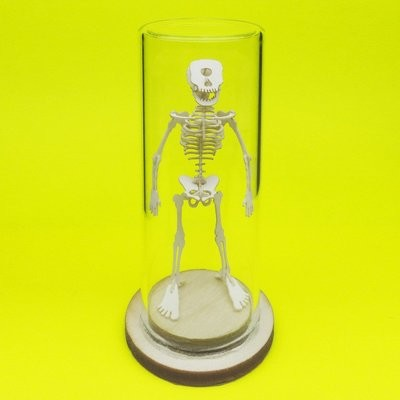 Tiny Cyclops Skeleton Deluxe Mini 3D Kit