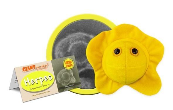 Herpes (Herpes Simplex Virus 2)