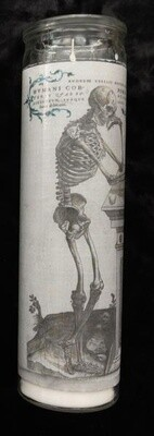 Vesalius Candle- Podium Pose