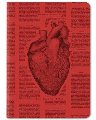 Anatomical Heart Notebook