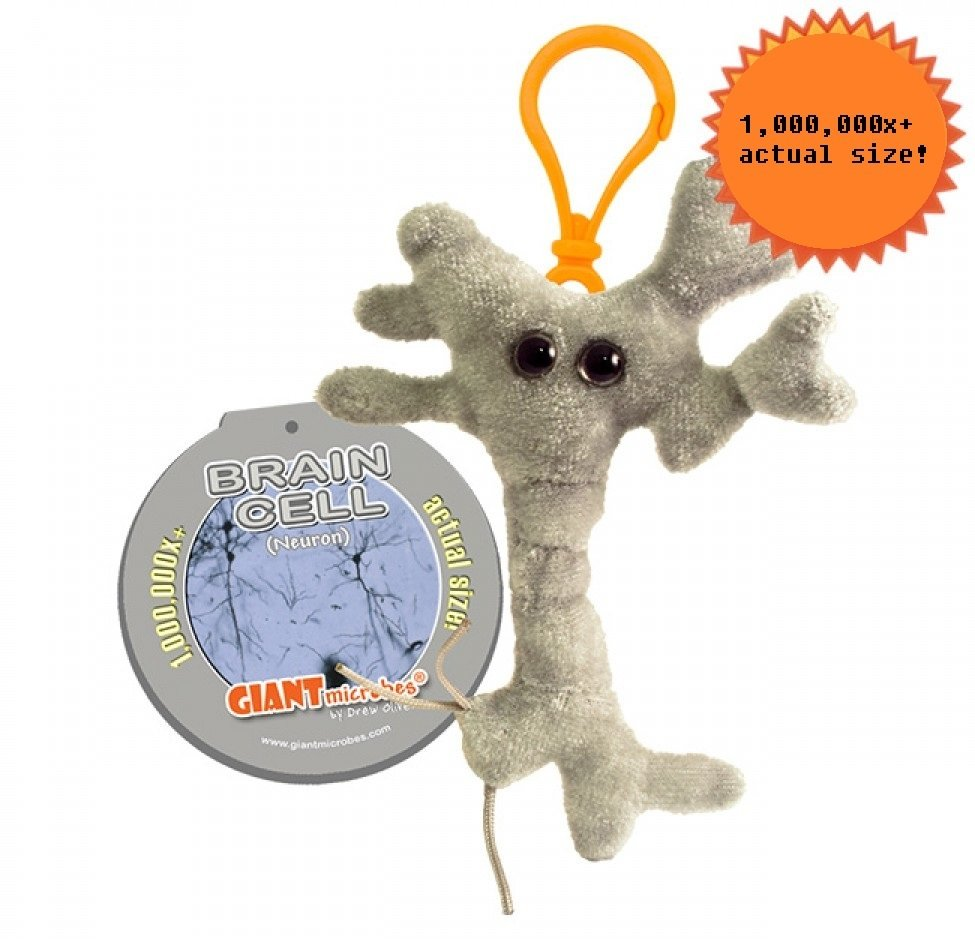 Brain Cell (Neuron) Key Chain