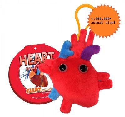 Heart Organ Key Chain