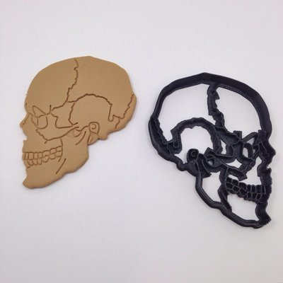 Anatomical Skull Cookie Cutter