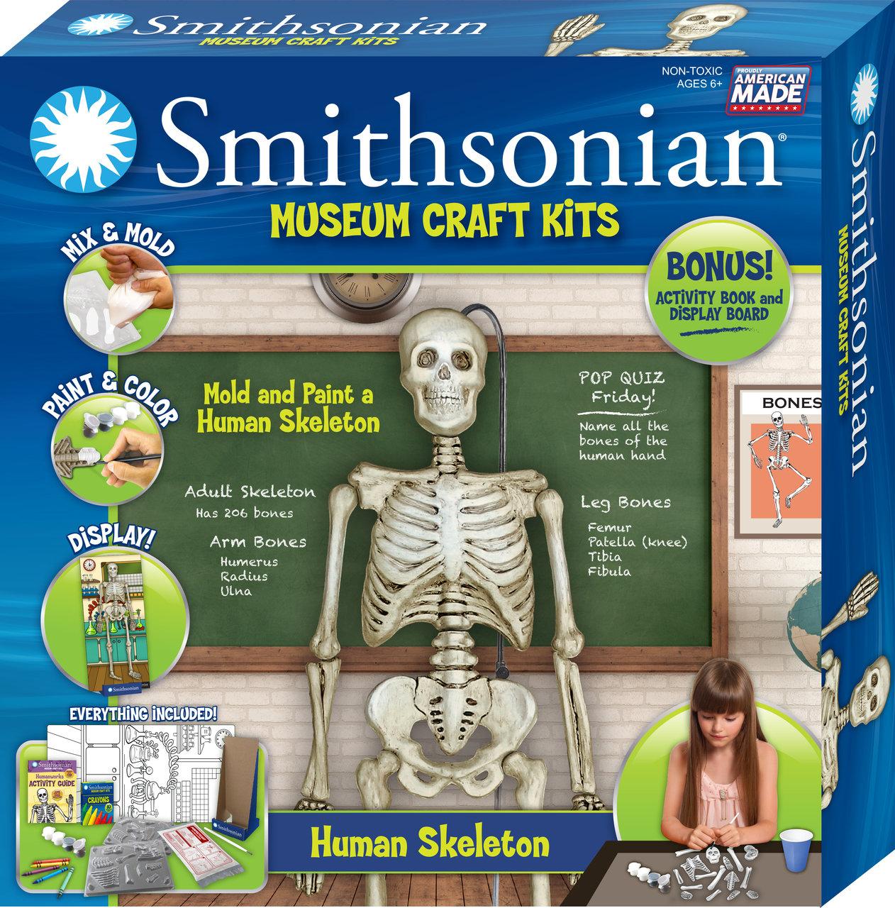 Smithsonian Human Skeleton Casting Kit