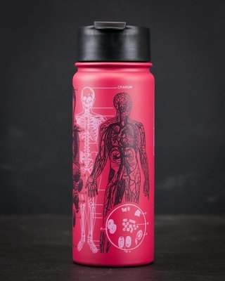 Human Anatomy Stainless Steel Vacuum Flask