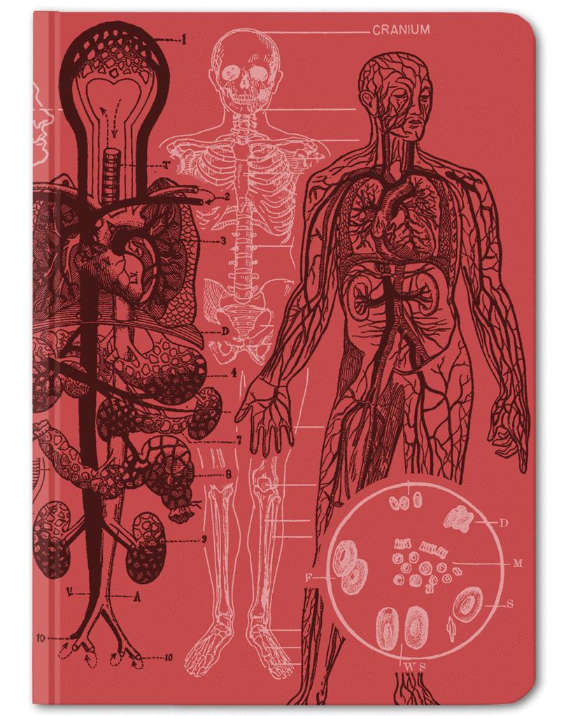 Aorta Hardcover Journal Notebook - Dot Grid