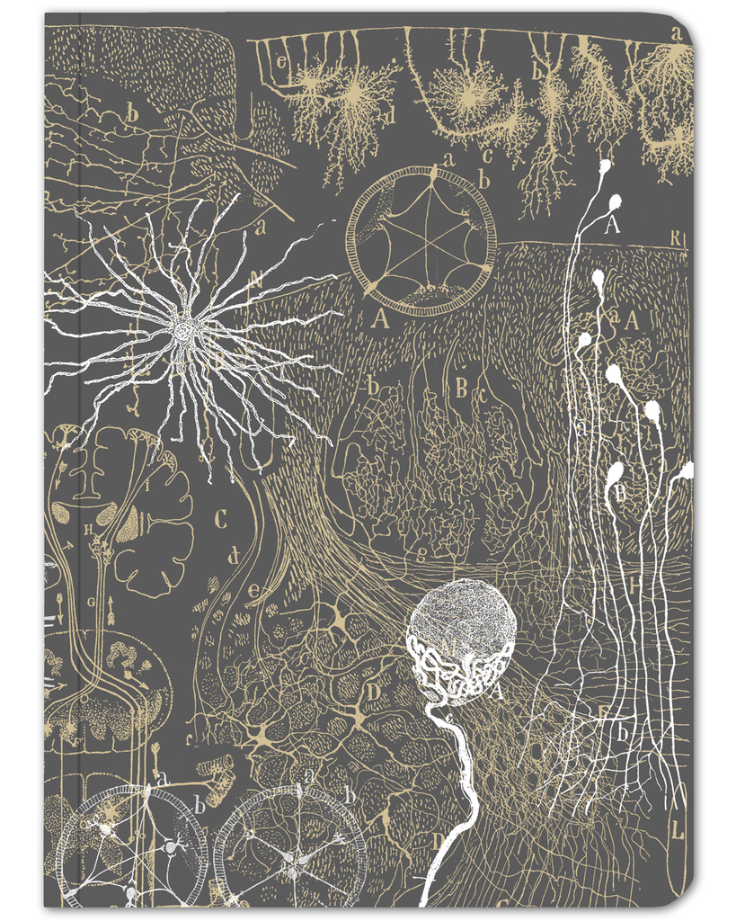 Neurons Softcover Notebook - Lined