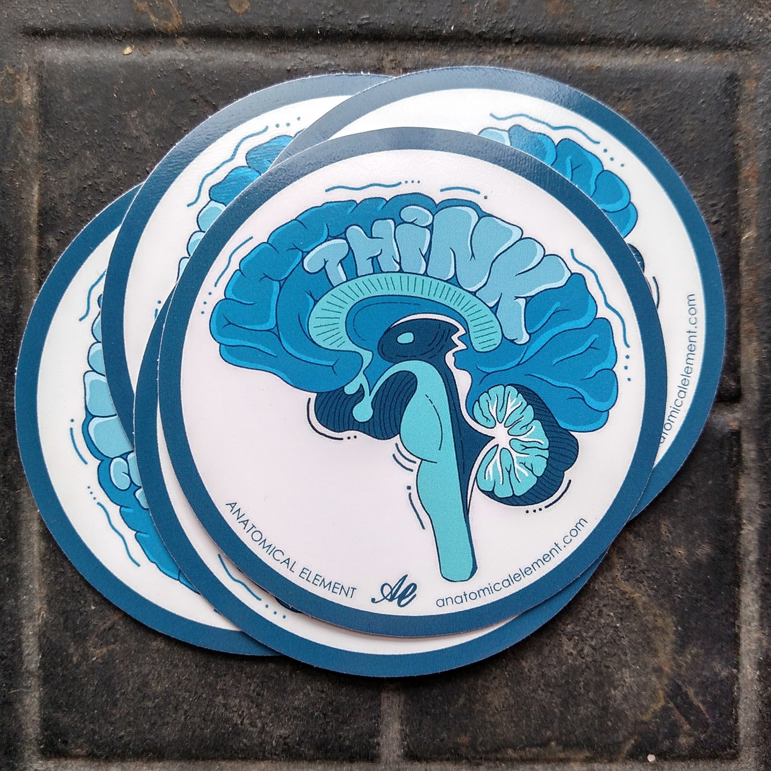 Anatomical Element THINK Brain Sticker
