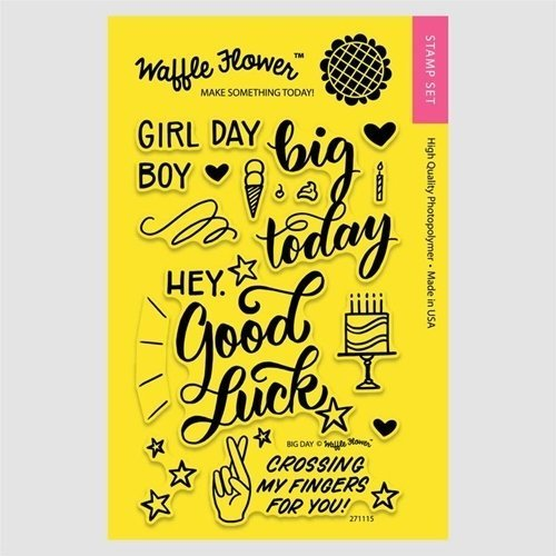 Waffle Flower BIG DAY Clear Stamp Set