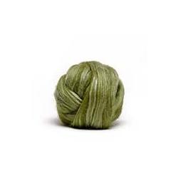 Lichen - Dyed Merino/Silk Top