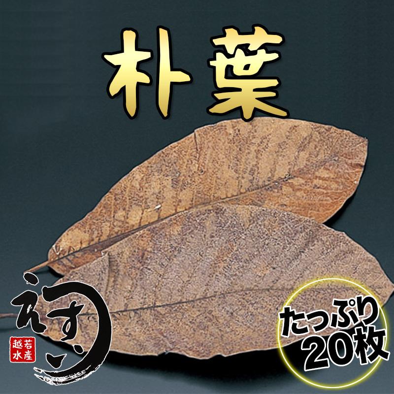 20 pc of Dried Houba Leaf for Miso to Grill, Takayama, Hida