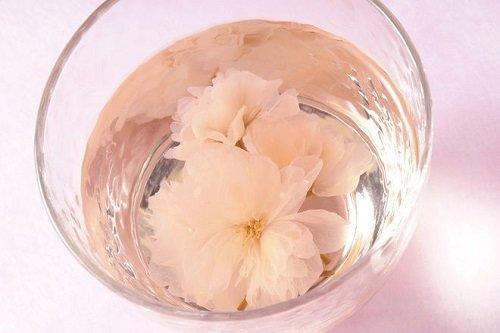 """Gyokuroen """"Sakura Tea"""" Salted Sakura Flower, 40g in 1 box"""
