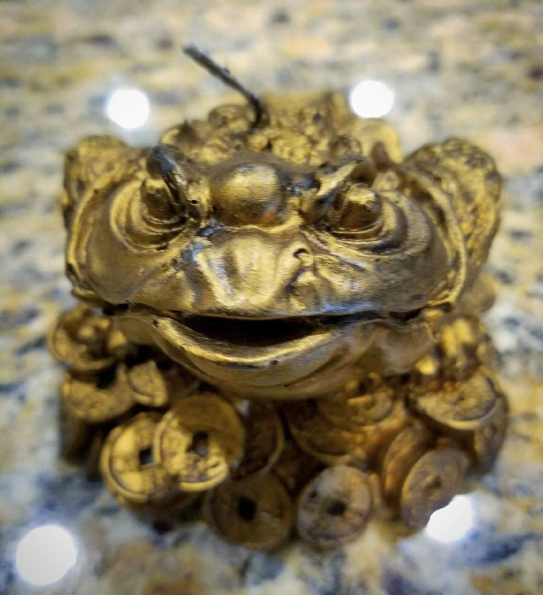 The Money Toad