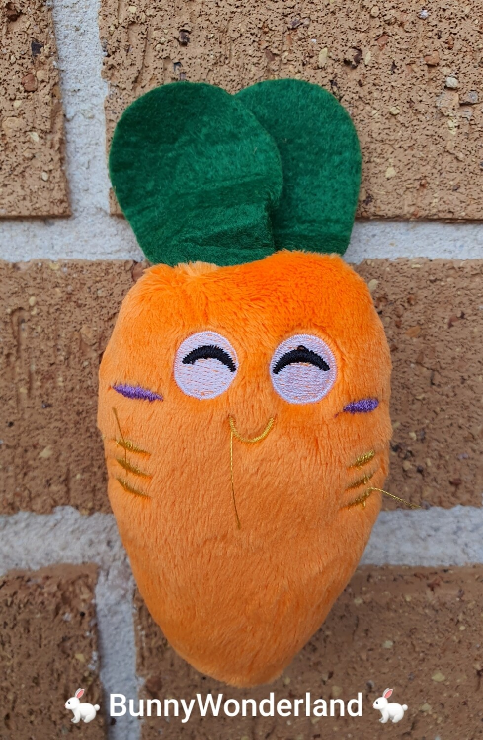 Squeaky Plush Carrot Toy