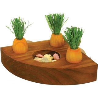 Carrot Toy 'n' Treat Holder